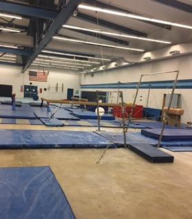 DGS gymnasts vault into their 2016-17 season