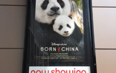'Born in China' was boring and cheesy