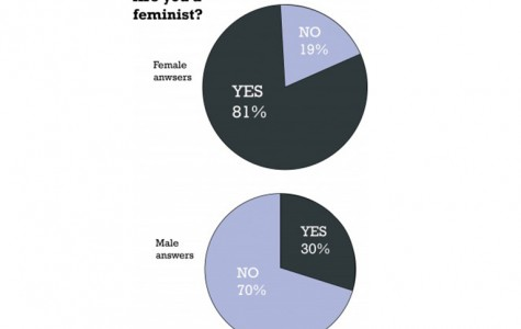 Feminism fights for equality, not for superiority