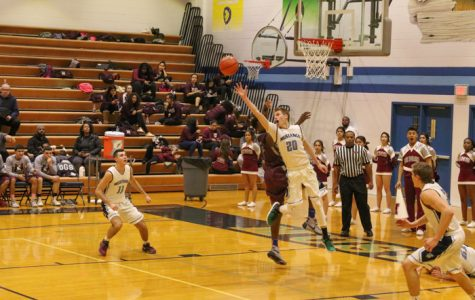 DGS boys varsity basketball dominates the court against Morton: 1/11/17
