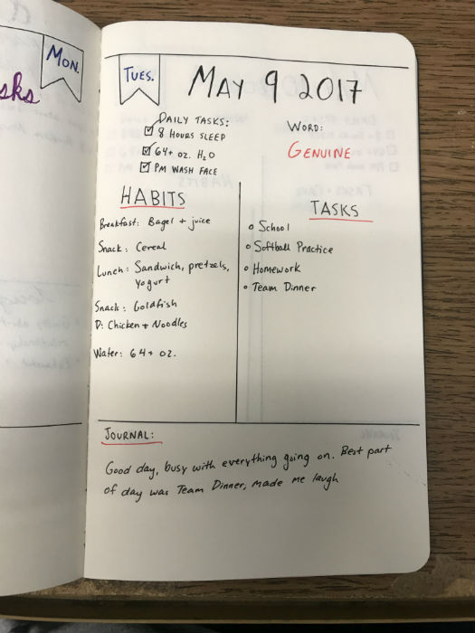 Bullet journal shoots past your typical organizer