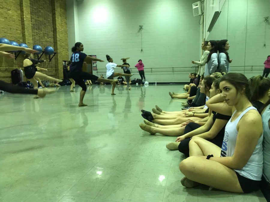 JV alternates step up for Fillies competitive season