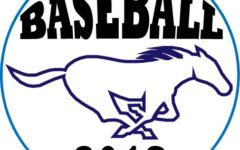 DGS baseball cruises past crosstown rival