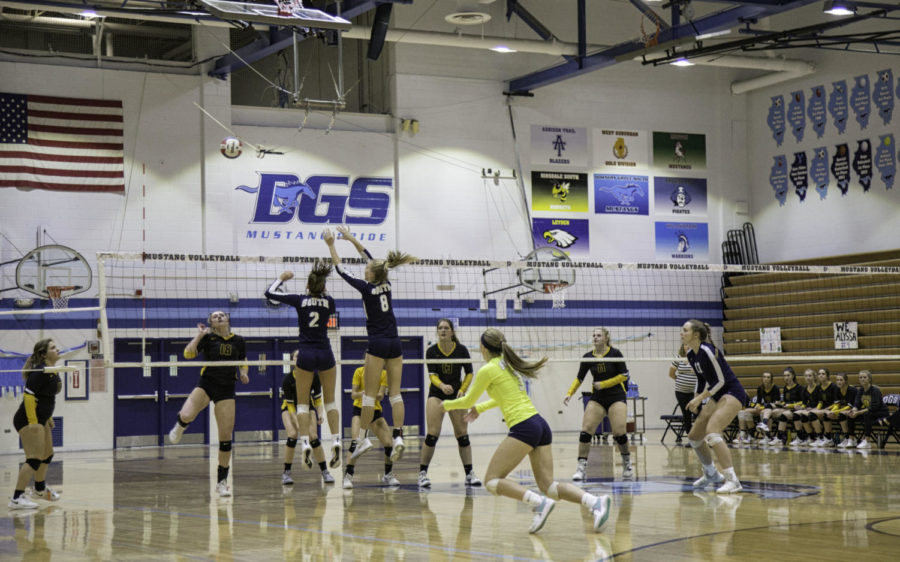 DGS players block the other team's attempt at a spike.