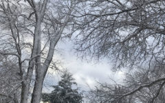 Top 10 reasons why I love and hate the snow