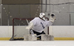 DuPage Stars Prepare for Tough Season, Younger Players