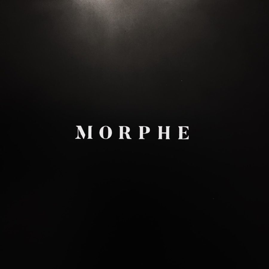 Morphe+Cosmetics+was+established+in+2008+as+one+of+the+new+online+makeup+brands.