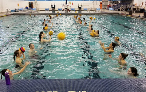 Water polo club fights to be recognized by the IHSA