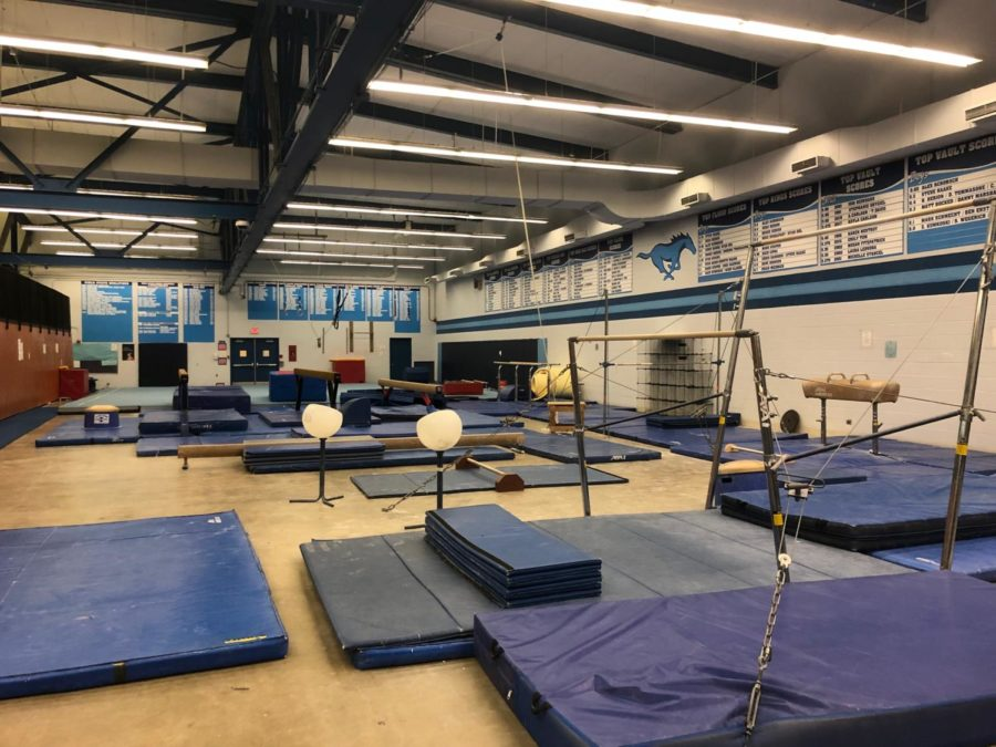 The DGS gymnastics balcony-- home of the new co-op team announced at yesterday's meeting