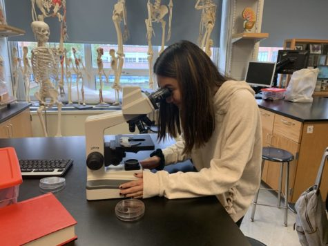 DGS experiments with new biomedical science class