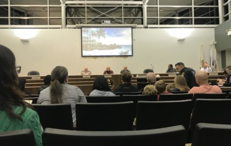 Village of Woodridge addresses cannabis sale questions