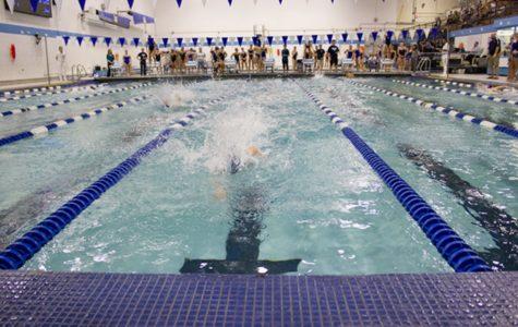 DGS girls swim team makes waves through the record books