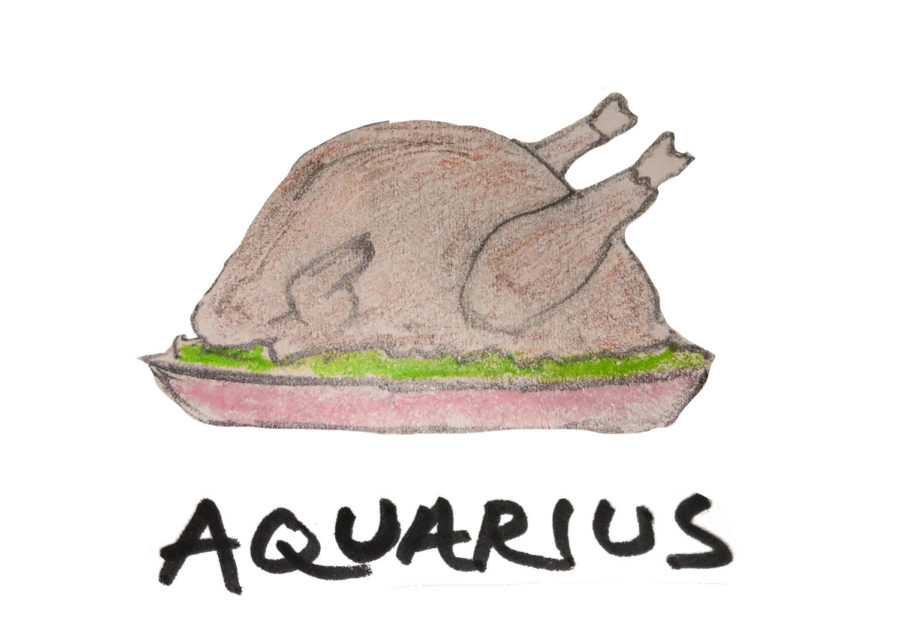 Let your horoscope guide you to what iconic Thanksgiving dish you are!