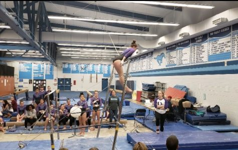 A tale of two teams: North and South combine gymnastics program