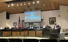 DG Village Council discusses Civil Rights Day, zoning, Project Dandelion