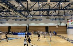Girls varsity basketball fights to 53-51 win over Addison Trail