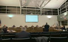 Woodridge village board authorizes lot subdivision, resurfacing resolutions