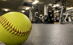 DGS softball's pre-season training is out of the park