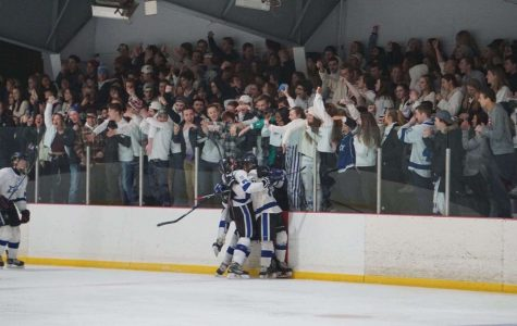 DuPage Stars' hockey players celebrate with their fans after scoring a goal at a 'pack the barn' game
