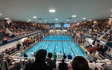 Junior Matt Leinart wins both the 200-freestyle and the 100-breaststroke at the IHSA state championship.