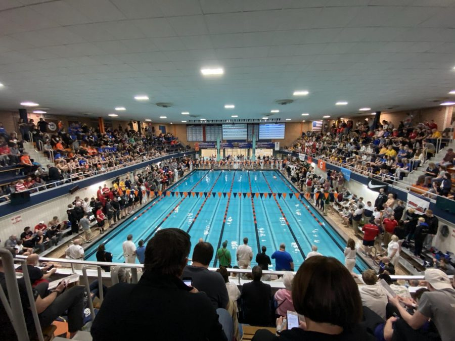 Junior+Matt+Leinart+wins+both+the+200-freestyle+and+the+100-breaststroke+at+the+IHSA+state+championship.