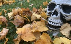 A spooky skeleton from Halloween lies in some leaves for Fall.