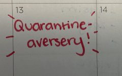 "On March 13, 2021, it will officially be one year since DGS went into lockdown, making it our ""quarantine-versary""."