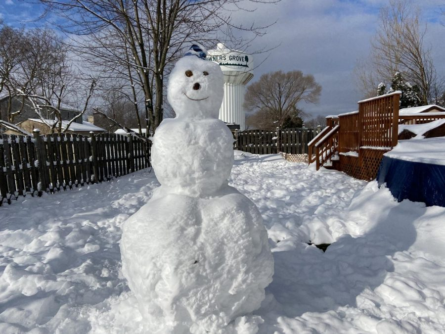 Another winter activity made possible for Downers Grove residents by the snowstorm is building snowmen. This one made by a DGS senior stands at nearly seven feet tall.