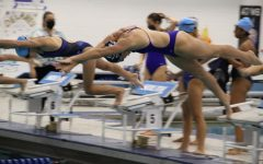 Hailey Welp dives into her fourth year on the DGS Swim Team.