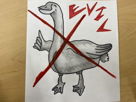 Geese are the bane of my existence, and before you call me crazy, here are 5 reasons why geese are the worst species on the planet.